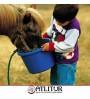 10 Lu Doğada Atlı Gezi Eğitim Pak. 600 Dk